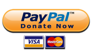 PayPal Logo with Credit Card options